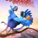 Isheily Ebel's avatar