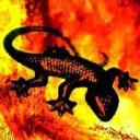 Salamandra UY's avatar