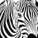 黑白馬's avatar