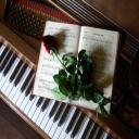 pianoman.jeremy's avatar