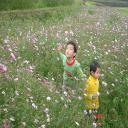曉曉's avatar
