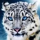 風影's avatar