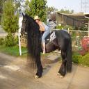 fatema_97502's avatar