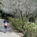 Guangchen Ho's avatar