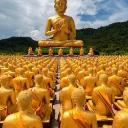 Buddha's avatar
