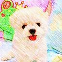邱小茹's avatar