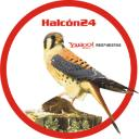Halcon24's avatar