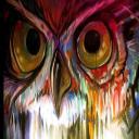 Owl.'s avatar