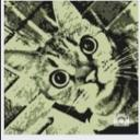 獅子喵's avatar