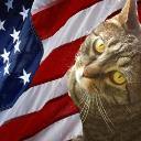 Phoenix el Gato Republicano's avatar