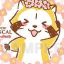 京伶's avatar