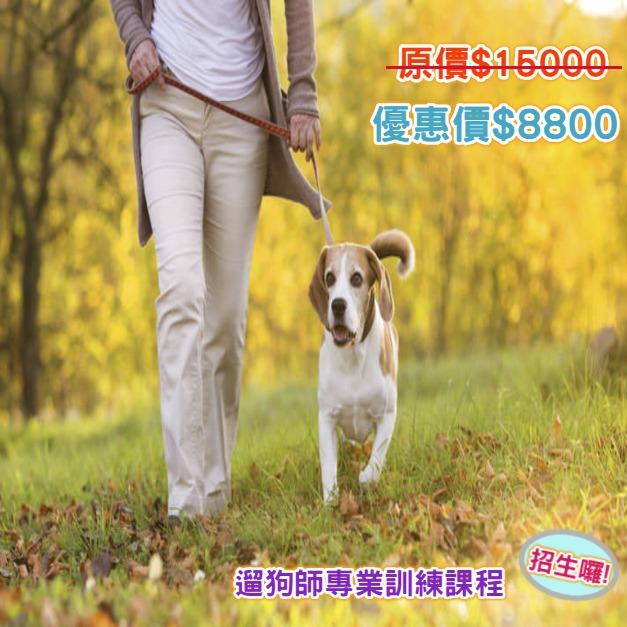 2019遛狗師訓練課程台北登場:兩人同行報名享優惠!