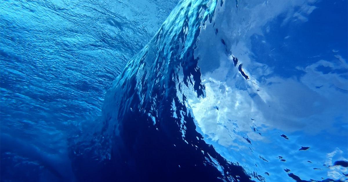 Will market ride blue wave?
