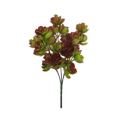 Bungalow Rose Echeveria Lotus Succulent Bush Succulent Plant Set Of 3 X112193621 Flower Leaves Color Green Burgundy Yahoo Shopping