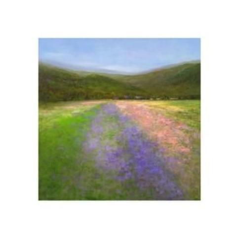 """Sheila Finch Flowers of Half Moon Bay I Canvas Art - 15"""" x 20"""""""