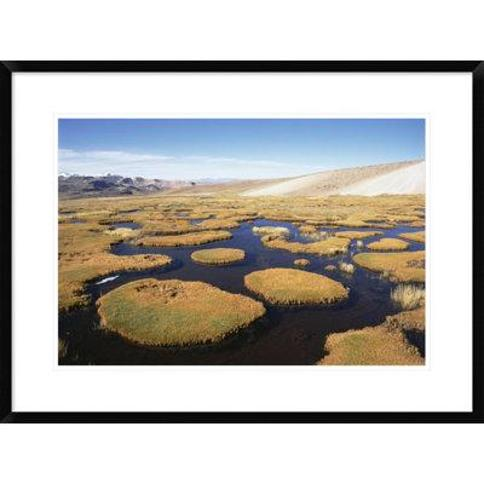"""Global Gallery 'Andean Bofedal Near Source of Amazon River Mismi Mountain Peru' Framed Photographic Print DPF-451494-1218-266 Wall Art Size: 18"""" H x 24"""" W x 1.5"""" D"""