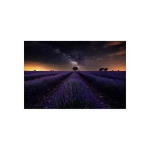 "Jorge Ruiz Dueso Fields of Castilla Canvas Art - 20"" x 25"""