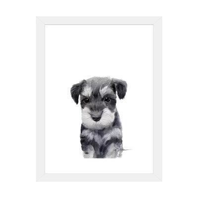 Schnauzer Puppies Yahoo Shopping