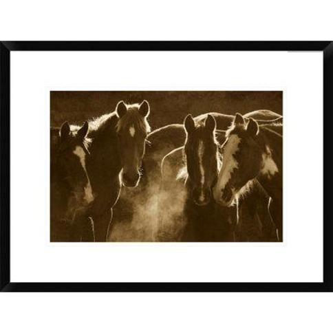 """Global Gallery Horse Herd at Annual Round-Up Backlit Ecuador - Sepia by Pete Oxford Framed Photographic Print DPF-453720 Size: 18"""" H x 24"""" W x 1.5"""" D"""