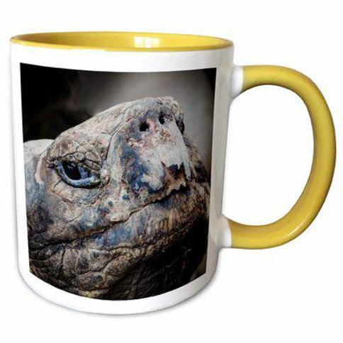 East Urban Home Ecuador Galapagos Islands Footed Booby Cindy Miller Hopkins Coffee Mug X111356650 Color: Yellow Capacity: 11 oz. Theme: Ingersoll Galapagos Charles Darwin Center