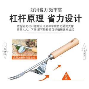 拔草器園藝除草工具養花種花家用鐵鍬小鏟子野菜不銹鋼農用起苗器