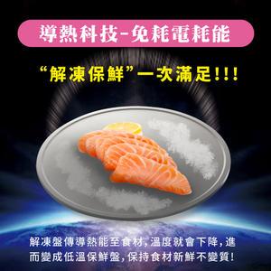 【西華SILWA】極速解凍燒烤兩用盤 解凍板 BS3003