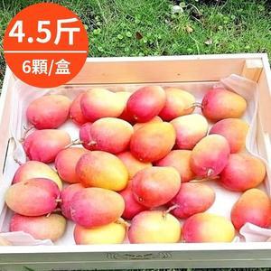 嚴選台東在欉紅-蜜雪芒果禮盒4.5斤(6顆/盒)
