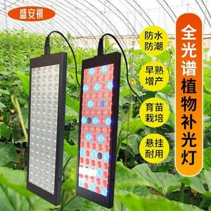 攝影燈 補光燈盛安祺多肉補光燈 上色全光譜LED植物生長燈大棚室內仿太陽光水草