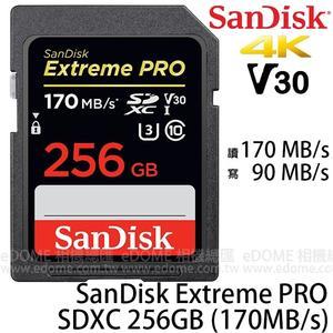 SanDisk Extreme Pro SD SDXC 256GB 170MB/S V30 高速記憶卡 (免運 增你強/群光代理終身保固) 256G SDSDXXY-256G