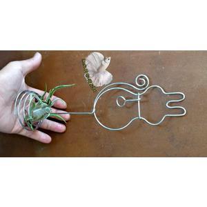 手作 鋁線貓咪/兔子架+空氣鳳梨 [小女王頭] 整組出售 活體空氣鳳梨 空鳳植栽 需通風良好