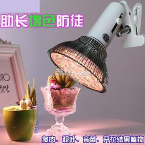 植物生長燈百麗客植物燈生長燈 全光譜LED多肉補光燈防徒上色花卉陽光燈  走心小賣場