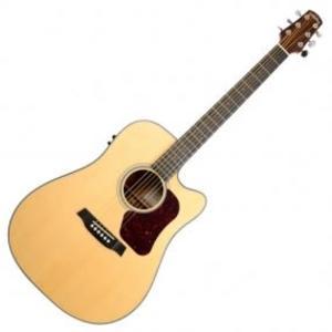 【金聲樂器廣場】Walden D550CE 高CP值 面單板 電木吉他