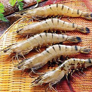 活凍特級大草蝦 6尾入/400g±10% #蝦#草蝦#大草蝦#新鮮#野生蝦#蝦#中秋烤肉