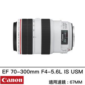 Canon EF 70-300mm f/4-5.6L IS USM 台灣佳能公司貨 胖白 L鏡