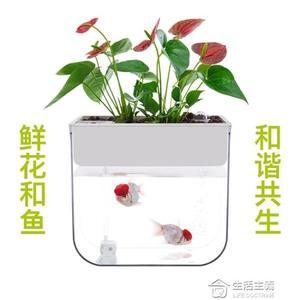 知魚魚菜共生小魚缸小型迷你水族箱免換水魚缸懶人辦公室生態魚缸 mks全館滿千折百