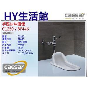 凱撒衛浴 Caesar 手壓快沖蹲便 C1250 / BF446 (69.5CM) 蹲式馬桶+手壓式沖水凡而  [區域限制]