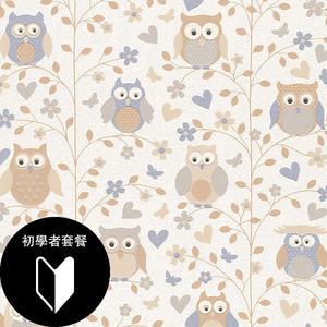 兒童房 女生房 彩色貓頭鷹紋 rasch(德國壁紙) 2019 / 459111  +道具套餐