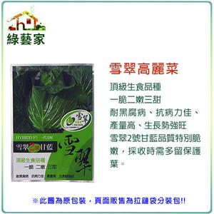 【綠藝家】大包裝B16.雪翠高麗菜種子55顆