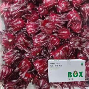 台東新鮮洛神花(帶籽)5公斤免運組-現採常溫到貨請冷藏