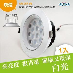 LED崁燈尺寸  12W白光投射崁燈1320流明30度-崁孔11.5cm (AN-257-09)