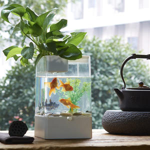 魚缸 自潔魚缸水族箱生態創意魚缸小型桌面懶人魚缸過濾免換水LED造景 MKS卡洛琳