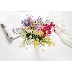 蘭花草小把花束/ 柵欄盆栽插花裝飾/家居客廳擺件*尋夢園
