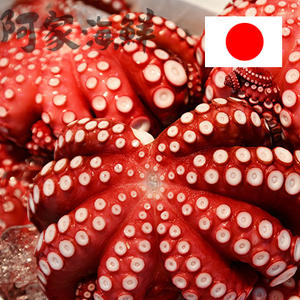 【日本製】熟大章魚1kg±10%/隻#無包冰#整隻#大章魚#章魚#日本料理
