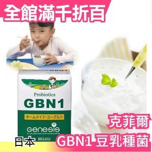 【GBN1 豆乳種菌】空運日本 克菲爾 發酵豆乳菌 乳酸菌 優格菌 一份10包入 親子DIY【小福部屋】