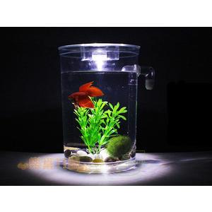 圓形款 自動換水 辦公室 懶人魚缸 小魚缸  創意魚缸 桌面 方形 居家 魚缸 生態缸 水族箱 開運