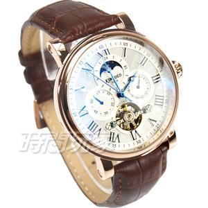 KINYUED 國王鏤空機械錶 日月星辰 三眼陀飛輪機械男錶 玫瑰金電鍍x咖啡 K047玫咖