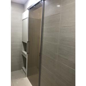 【麗室衛浴】一字一門單門片 緩衝門片適合浴室進出門  尺寸160*H200公分內