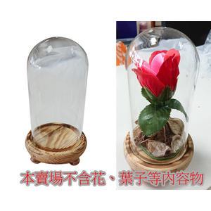 玻璃罩含木底座 另有永生花DIY禮物組合 情人節畢業禮品 可放乾燥花 展示品 美女野獸貝兒