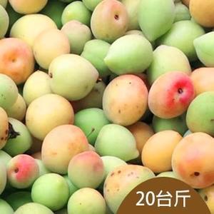 信義鄉王大姐新鮮青梅(20台斤)(Q梅、酒醋專用)