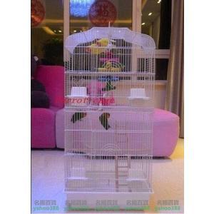 不二黑色平頂大鸚鵡籠 鳥籠 玄鳳籠 群鳥籠(配中隔網 玩具) 玩具是木質類,不是有色MY~403